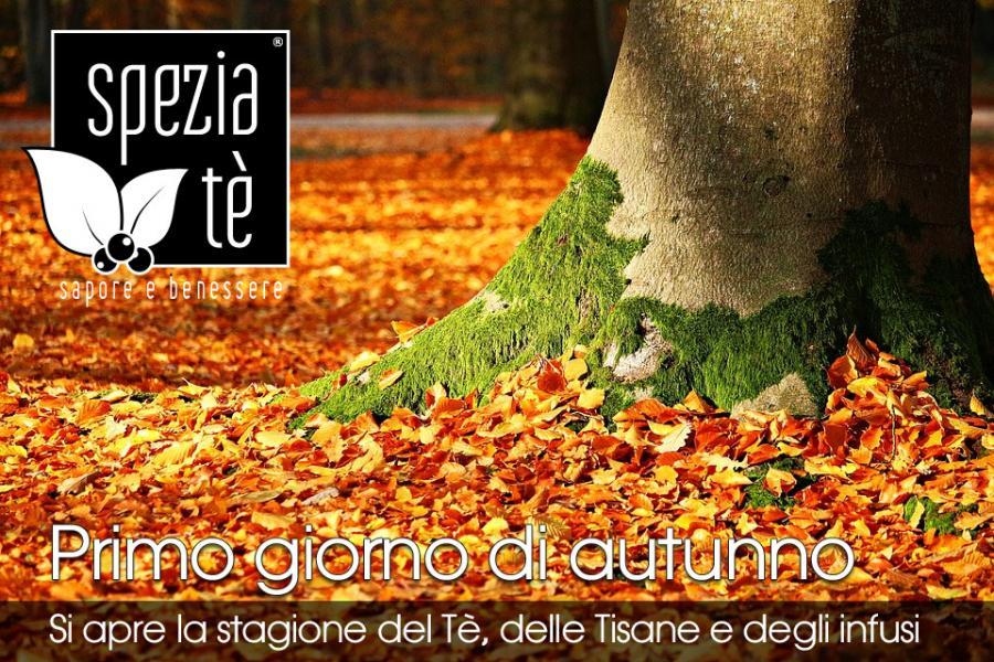 b_1506096303_f1_equinozio-di-autunno.jpg