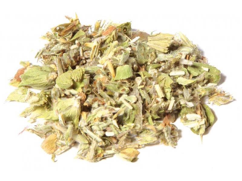 Tè Montagne greche (Sideritis syriaca)