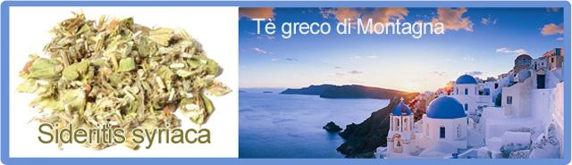 Tè greco di montagna