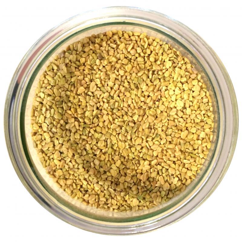 Fieno Greco semi