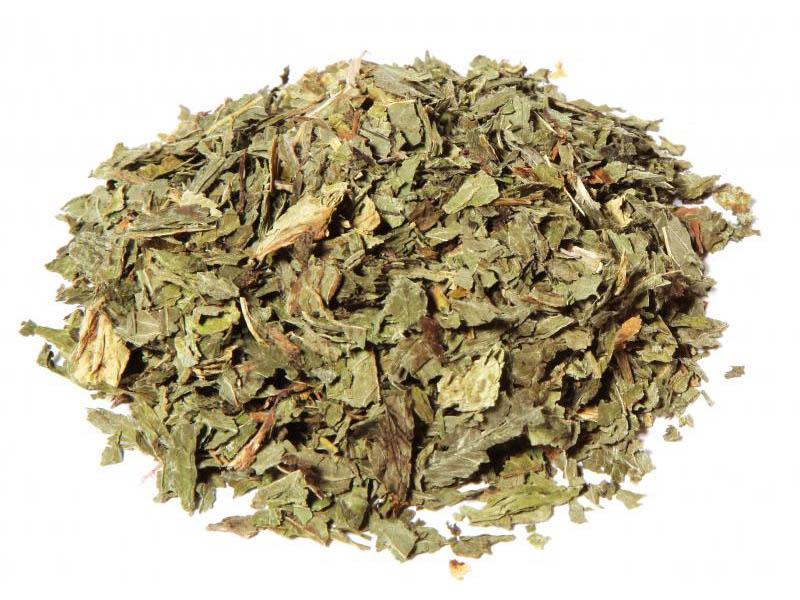 Menta piperita 1° Qualità Ultra aromatica
