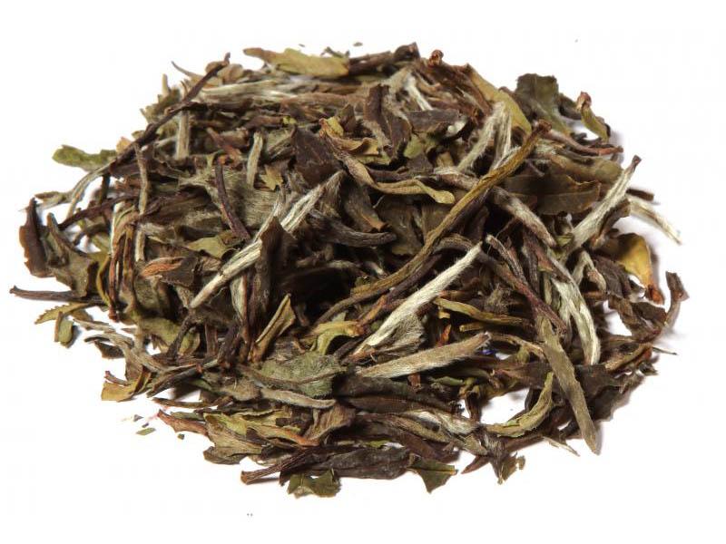 Tè bianco China Pai Mu Tan SPECIALE BIO